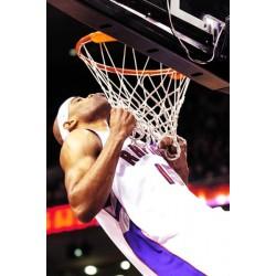 red de baloncesto