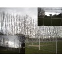 Nets for playing fields