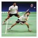 Redes de badminton